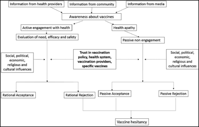 Vaccination Apathy Fueled By Decades Of >> Public Trust In Vaccination An Analytical Framework Indian